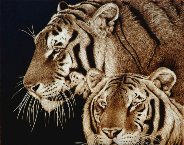 ORIGINAL ANIMAL ART TIGERSBIG CATS- DRAWINGPYROGRAPHYWOODBURNING-