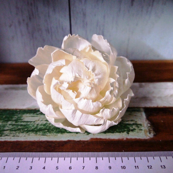 10 Peony Rose Sola Wood Diffuser Flowers 8 cm Dia. with cotton rope $15.99