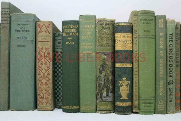 Lot 5 of GREEN Shades of Green Old Vintage Antique Rare Hardcover Random Books