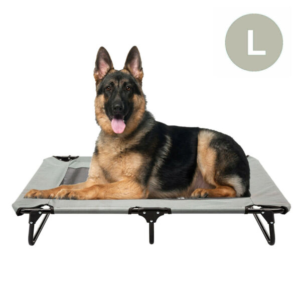 Large Gray Elevated Dog Bed Cat Cot Portable Raised Cooling Pet Cozy Lounger $42.99