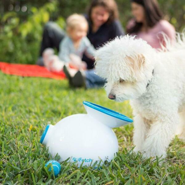 iFetch Original Automatic Dog Ball Launcher