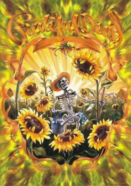 THE GRATEFUL DEAD SUNFLOWER FIELDS FOREVER POSTER 24x36 in
