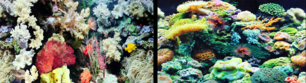 Marina Aquarium Fish Tank Background by the foot 12quot; tall Two sided. WORLDWIDE $2.40