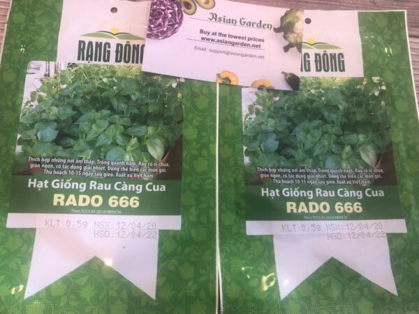 Hat giong rau cang cua peperomia pellucida quot;Krasang Teapquot; in Khmer 2 Package $12.00