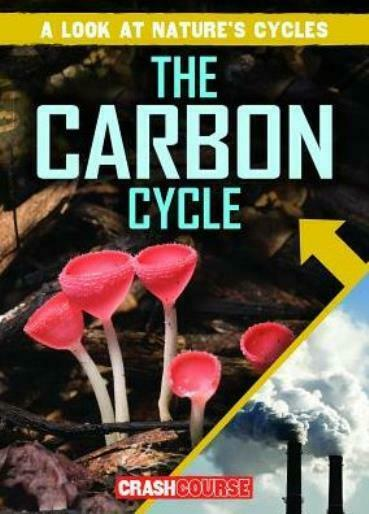 The Carbon Cycle $12.55