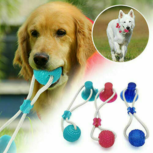 Pet Molar Biting Ball Toy Dog Tug Of War Chewing Ball Toy With Suction Cup USA $7.99