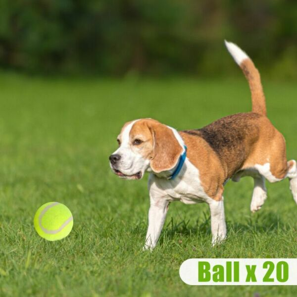 Livebest 2 quot; Puppy Tennis Dog Small Pet Non Toxic Ball Thrower Play Toy New Gift $21.99