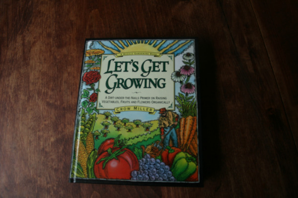 Let#x27;s Get Growing : A Dirt under the Nails Primer on Raising Vegetables Fruits $15.00