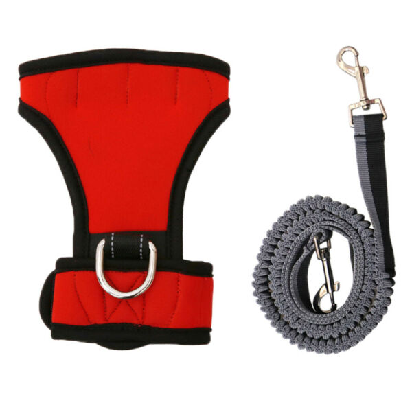 Pet Lead Glove Traction Rope Active Walking Training Quick Release Buckle Dogs $18.66
