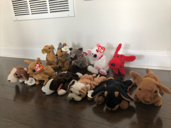 TY Beanie Babies Dog Lot Lot Of 11 Assorted Dogs $13.50