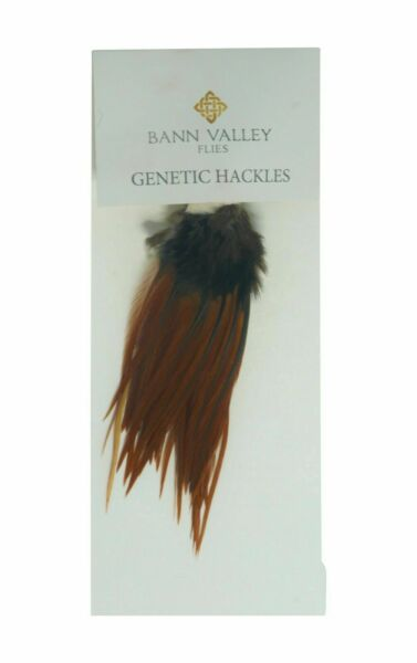 Metz Genetic Hackles Cock Neck Natural Furnace Average Sizes 16 10s GBP 6.50