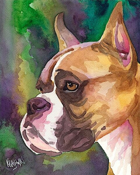 Boxer Dog 11x14 signed art PRINT RJK from painting $29.50