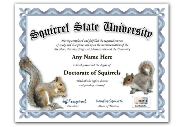 Squirrel State University Personalized Diploma w Gold Seal Novelty Funny Gag