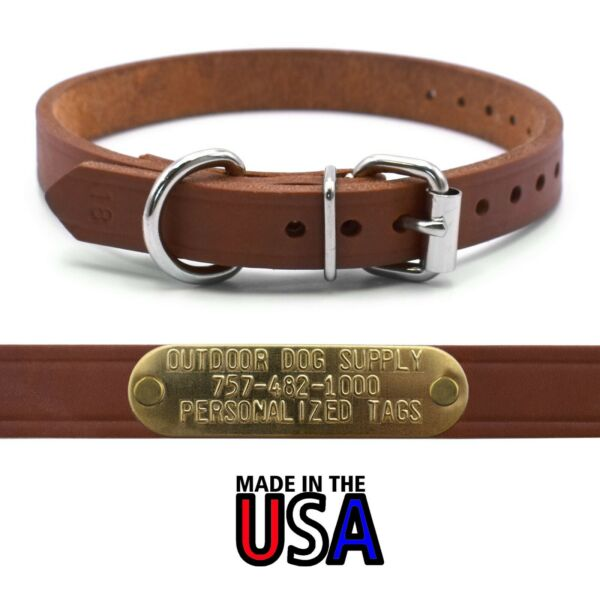 3 4quot; Leather D Ring Dog Collar Strap amp; Custom Brass Name Plate Id Tag $11.99