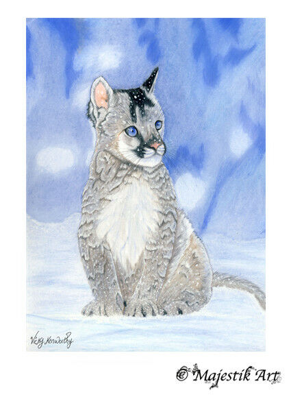 Mountain Lion Cub Snow ACEO Print quot;Serenequot; By V Kenworthy