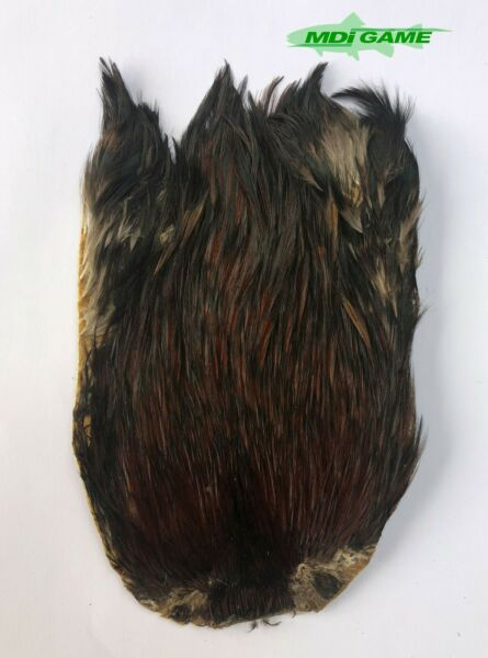 MDI Game Fishing Quality Natural Furnace Indian Cock Cape For Fly Tying 05 GBP 5.50