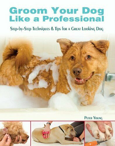 Groom Your Dog Like a Professional Step By Step Techniques and Tips $4.29