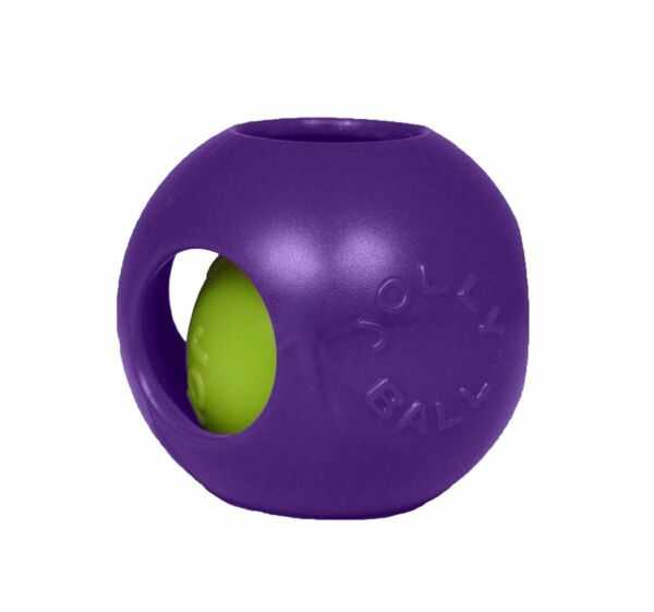 Jolly Pets Teaser Ball 8 inch Purple  Hard Plastic plus Squeaker Toy for Dogs $21.70