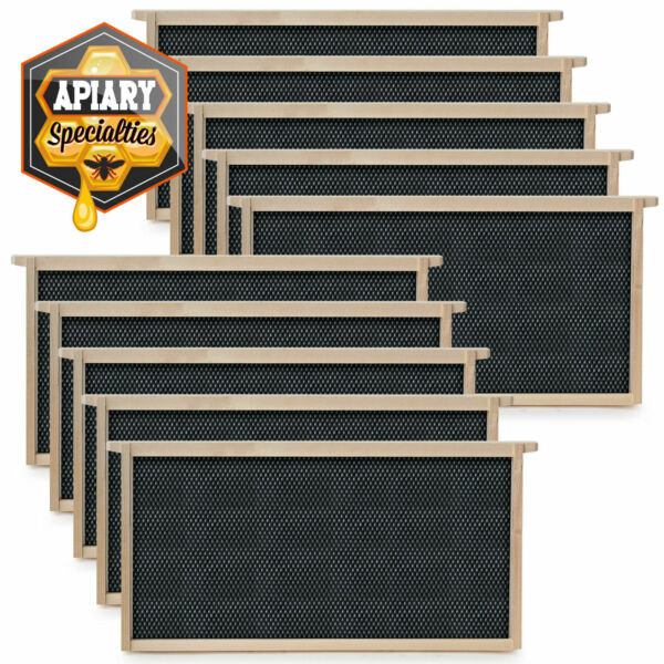 Beehive 10 Frame Add-On 10 Deep Replacement Frames Beekeeping $17.99