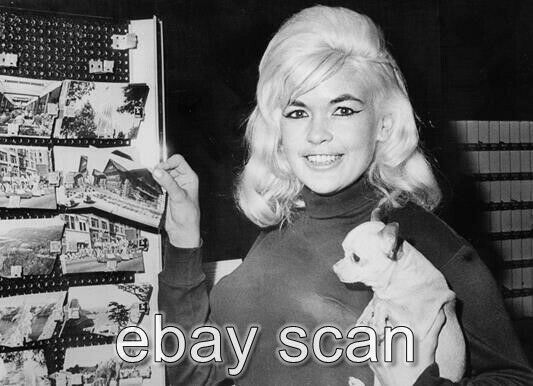 JAYNE MANSFIELD CUTE WITH CHIHUAHUA DOG LOOK AT POSTCARDS 8X10 PHOTO img0e $14.99