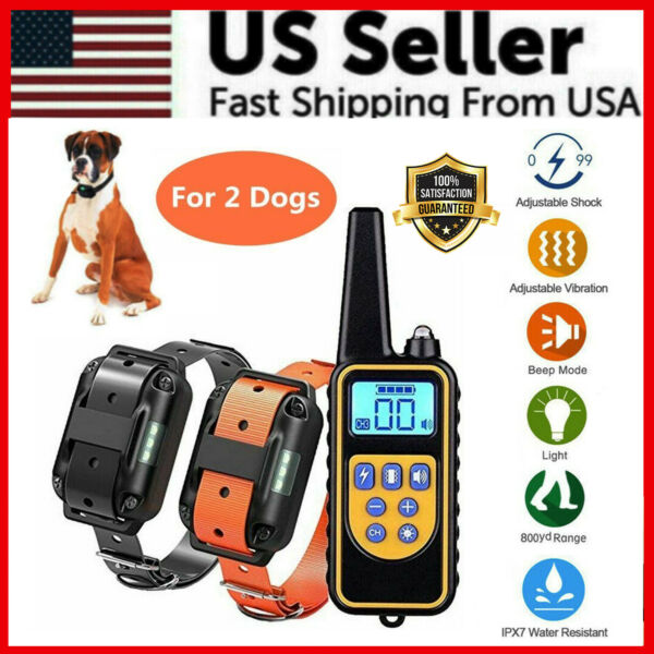 2600 FT Remote Dog Shock Training 2 Collar Set Rechargeable Waterproof LCD Pet $35.95