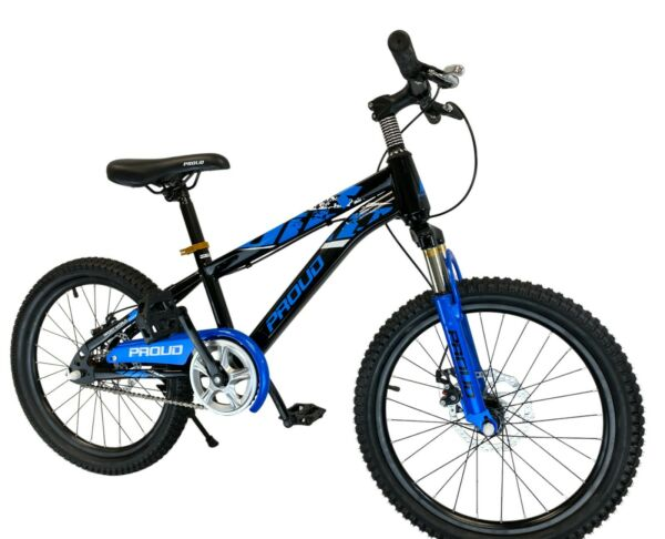 PROUD Kids Bike for Boy Girls Bicycle without Training Wheels 20 Inch 6 10 years $129.00