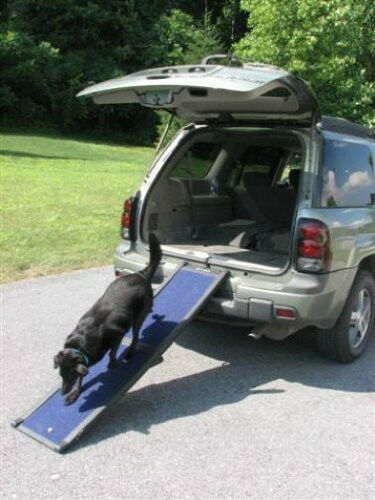 Pets Ramp Stairs Dogs 4 Step Ladder Wide Portable Steps Pet Gear Easy Dog Cat