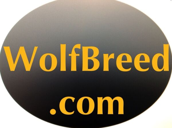 Wolfbreed.com PREMIUM PET DOG BUSINESS .com Website Domain Name For Sale $395.00
