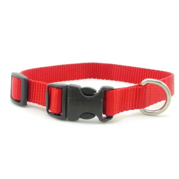 SCOTT Adjustable Nylon Dog Collar Various Sizes and Colors $4.99