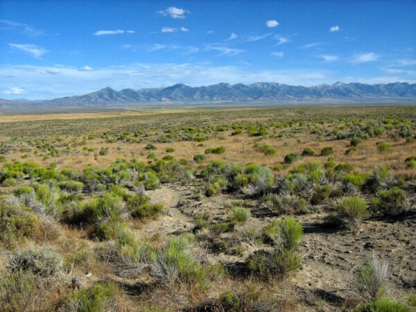 RARE 105 ACRE NV RANCH