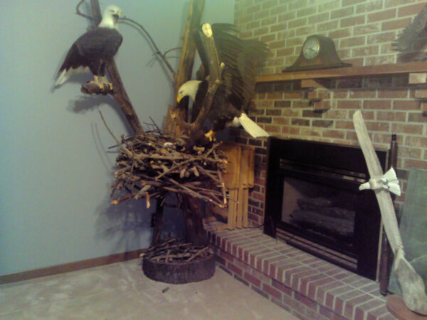 Magnificent Eagle statuenesttreelifelike and life- size