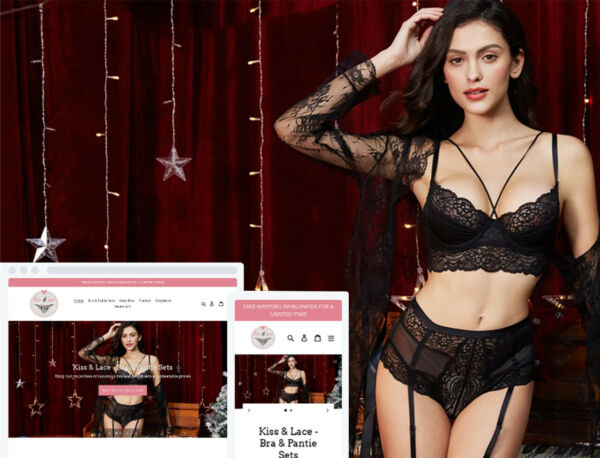 Shopify Dropshipping Sexy Lingerie StoreWebsite - Ready Made