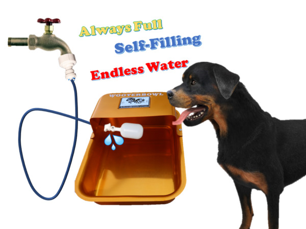 Self Filling Garden Hose Faucet Automatic Dog Waterer Water Bowl Wooterbowl $44.95