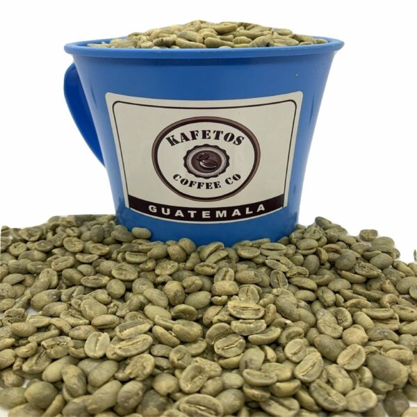 20 Lbs Specialty Grade Green Coffee Beans Raw Unroasted