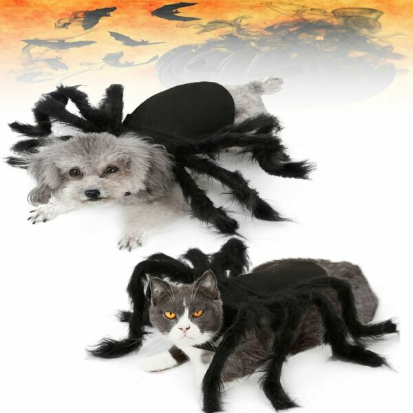 Dog Cat Spider Costume Funny costumes Clothes Christmas Party Pet Cosplay NEw $12.89