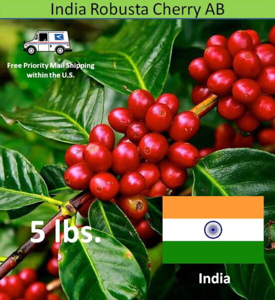 Green Coffee Beans India Robusta Cherry AB Unroasted 5 lbs.