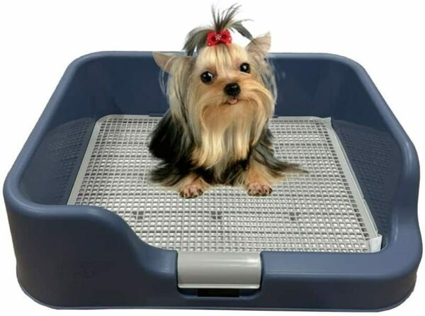 DogCharge Indoor Dog Potty Tray – with Protection Wall Every Side for No Leak $54.99