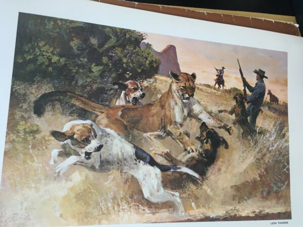 mountain lion fighting lion dogs print great colors and details w w0 wood frame $14.95