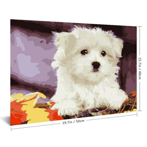 Animal Dog DIY Painting By Numbers Picture Colouring HandPainted Oil Painting $13.98