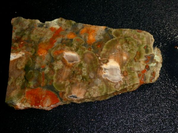 Fire Mt. Rhyolite slab 5 quot; x 3 1 4quot; lapidary cabbing rough display