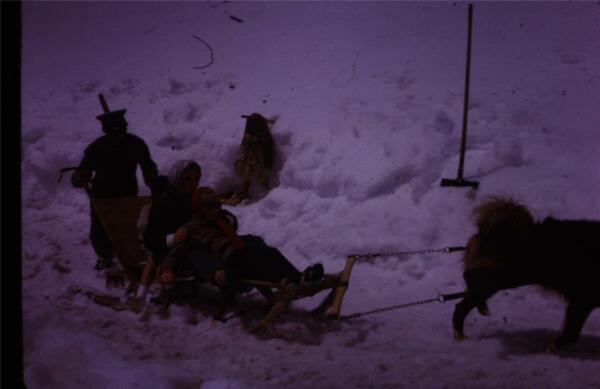 35mm Colour Slide Dog Sledding Europe 1963 AU $4.99