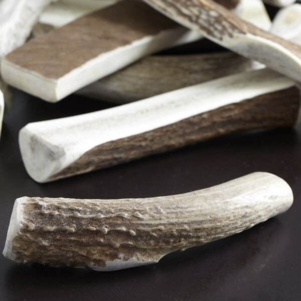 Split Elk Antler Chews for Dogs All Natural S XL Non Odorous FREE SHIPPING $12.95