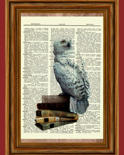 Hedwig Owl Dictionary Art Picture Poster Books Harry Potter Vintage Gift