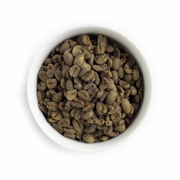 Decaf Sumatra Mandheling - FTO Swiss Water Decaf Unroasted Green Coffee - 5 Lbs.
