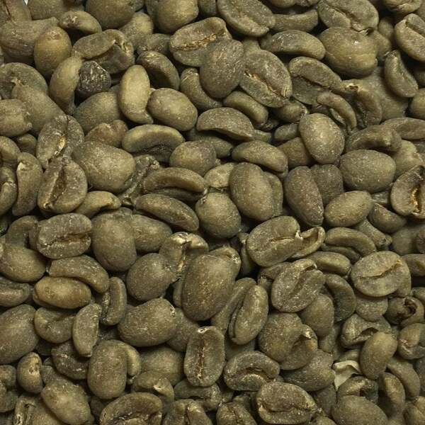 Peruvian FTO Water Decaf - 5 Lbs. Unroasted Green Coffee Beans