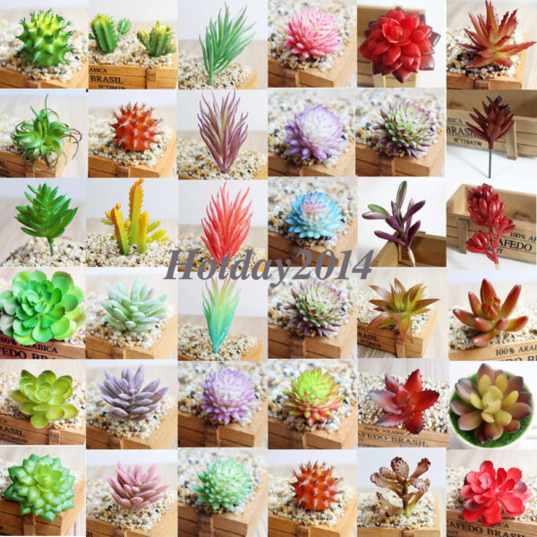 Simulation Mini Plastic Succulents Scindapsus Plants Garden Home Office Decor
