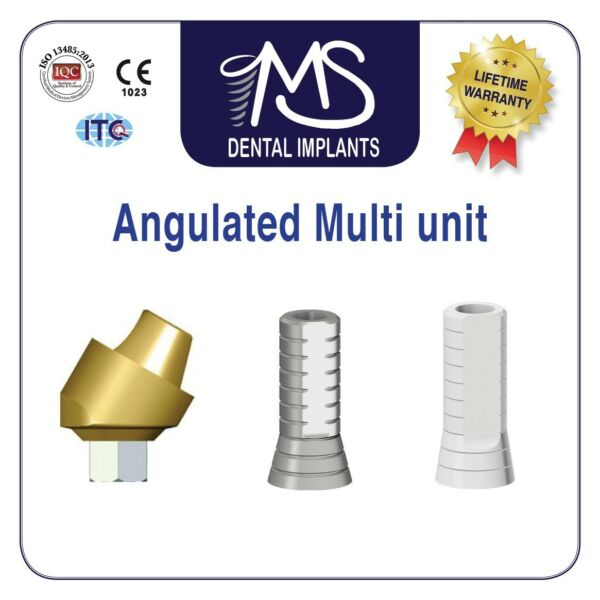 X100 Angulated Multi Unit Screw Retained Int Hex Lab For Dental Implants