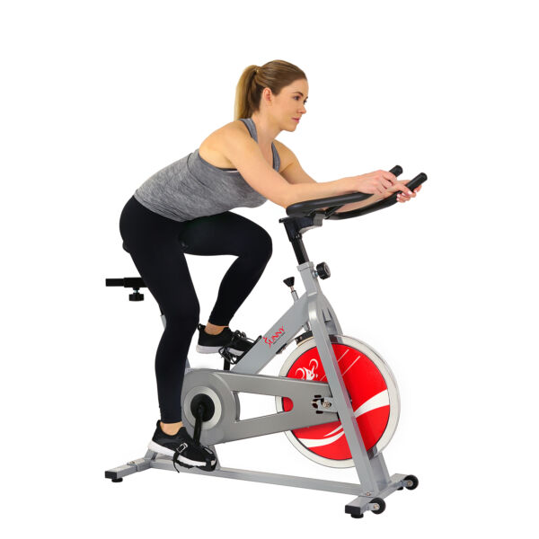 Sunny Health amp; Fitness SF B1001S Indoor Exercise Cycle Bike Silver $209.18