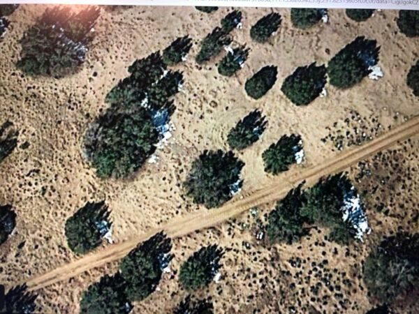 Arizona 10 Acres Apache County Witch Well Ranches