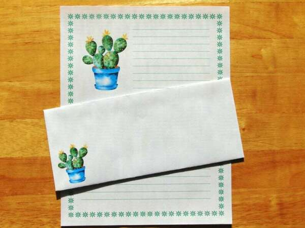 Cactus Watercolor Stationery 12 Sheets 6 Envelopes Lined Stationary $12.00